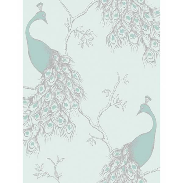 Birds Pink Wallpapers