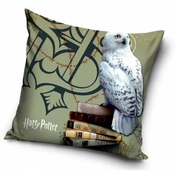 copy of Harry Potter Cushion