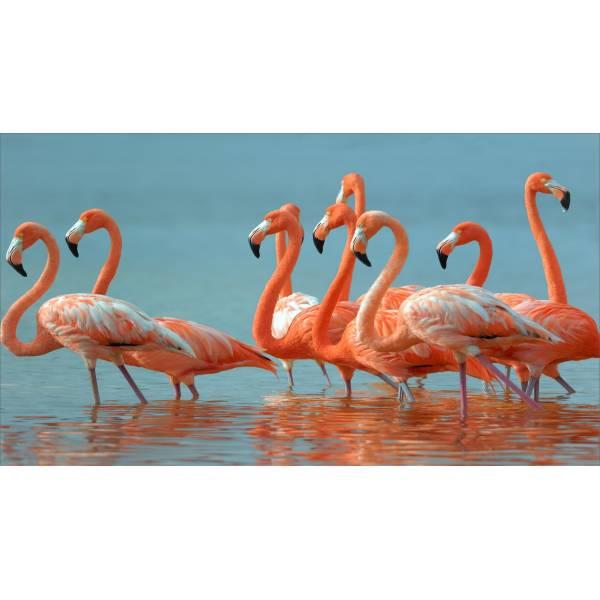 Flamingós Óriás Törölköző