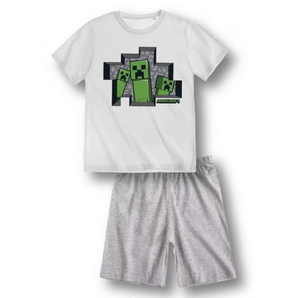 copy of Minecraft Red Pajamas
