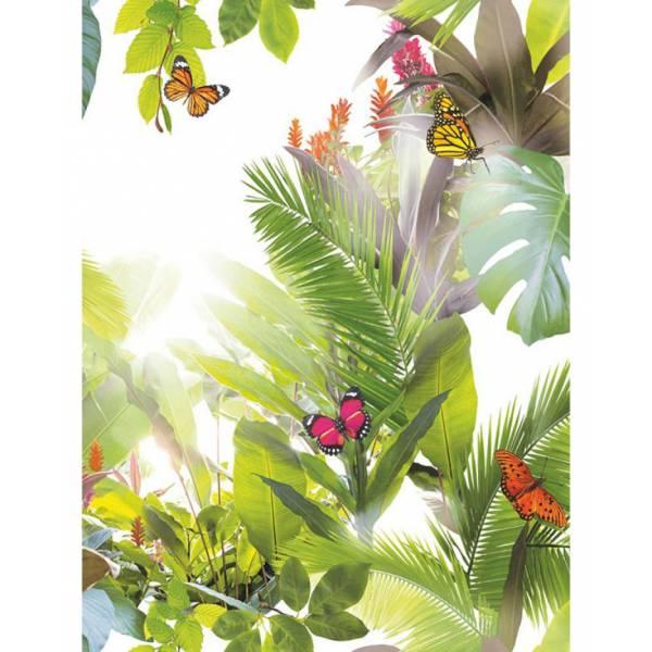Pillangós Tapéták (növények)