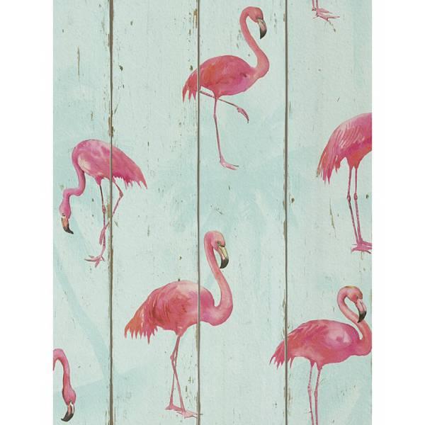 Flamingó Rózsaszín Tapéták