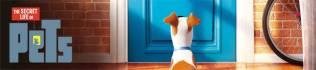 The Secret Life of Pets - 48 Hours